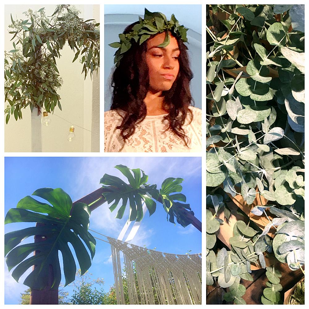 Der Hit zu jedem Dekorationsstil ist Eukalyptus